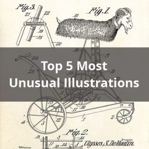 Top 5 Most Unusual Illustrations